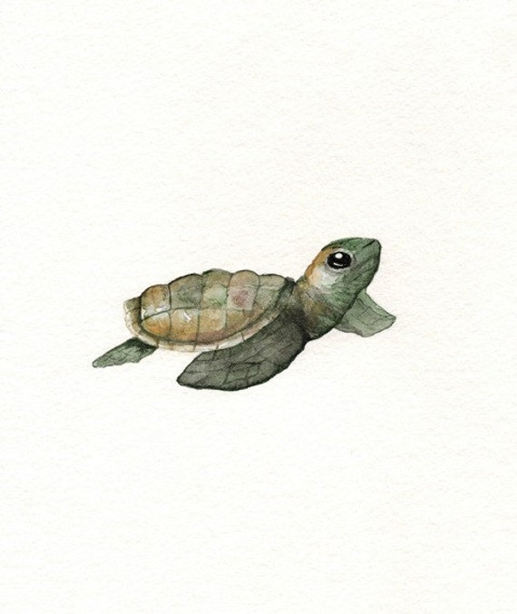Aceo Baby Loggerhead Turtle Watercolor Print By Willowlief