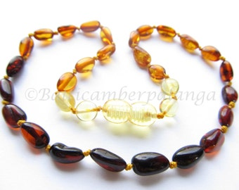 Baltic Amber Teething Necklace, Rainbow Color Olive Form Beads