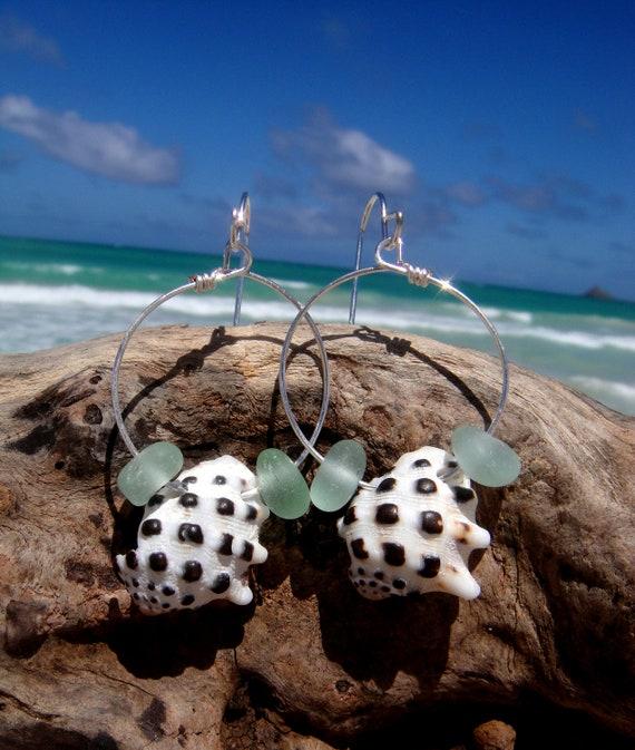 Hawaiian Aqua Beach Glass Surrouding Matching Beautiful Hawaiian Drupe Shells on Silver Plated Circular Wire Small Hoop Earrings