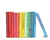 Colorful 13 Book Collection Fun interior Design Rainbow Vibrant Color Decor