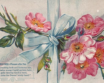 Embossed German Postcard Wild Rose or Primrose Feb Birth Flower USA