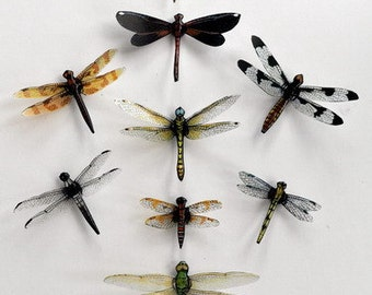 Dragonfly Magnets,Clear wings,  Set of 9, Insects, favors, decorations, nature, handmade