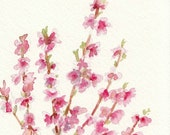 Watercolor Flowers, Pink Spring Blossoms Art, Original Watercolor Painting, 5x7, Cherry Blossom