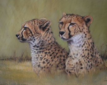 African animal cheetah wildlife LE print 'Brotherhood' from an original oil pastel artwork by artist Heather Irvine individually signed