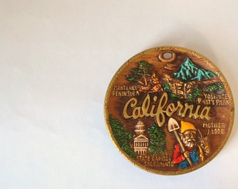 kitschy california souvenir wall hanging