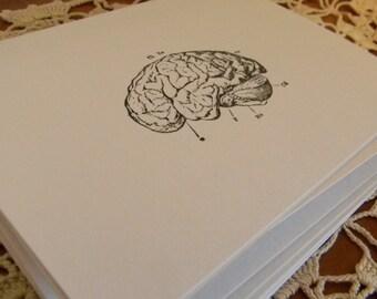 Brain Blank Note Cards