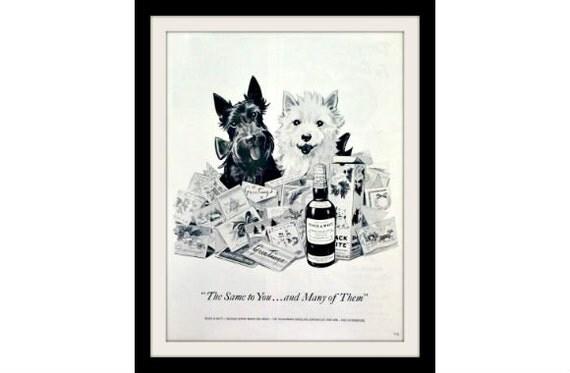 "1954 BLACK & WHITE Westie Dog Scotch Ad ""Holiday Greetings"" Vintage Advertisement Art Print"