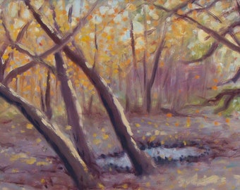 Mississippi River Valley - original painting