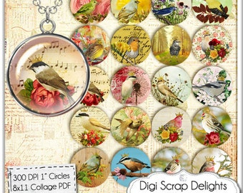 Birds Collage Sheet One Inch Circles for Pendants, Magnets, Altered Art, Ephemera Style, Instant Download