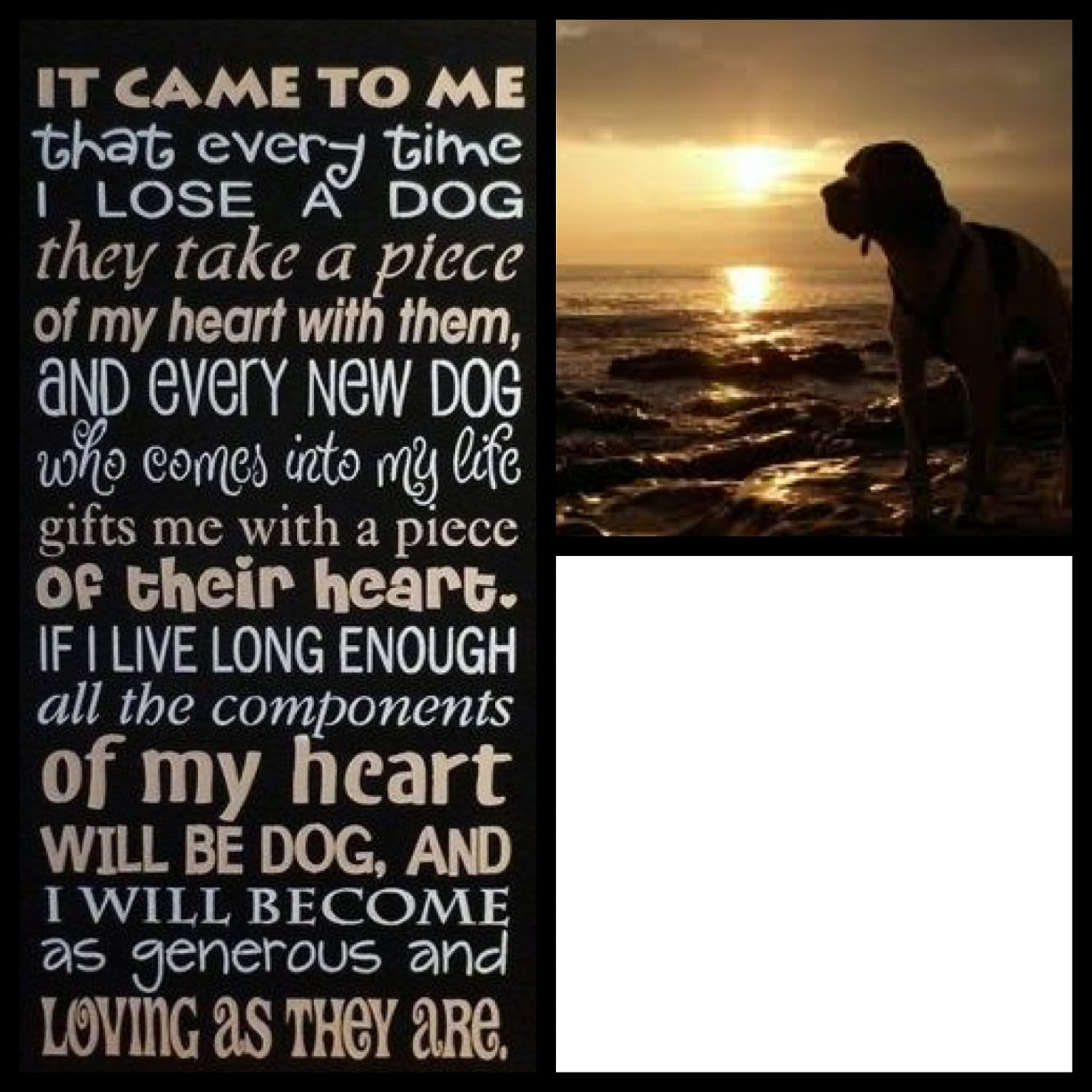 Pet Memorial Poem Personalized With Your Dog S Picture