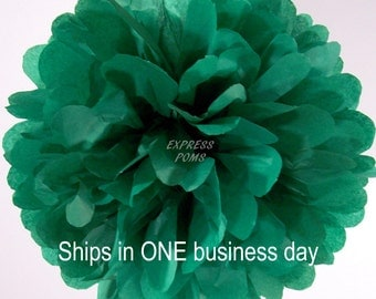 Kelly Green Tissue Paper Pom Pom - 1 Large Pom - Ships in ONE Business Day