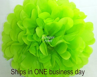 Lime Green Tissue Paper Pom Pom - 1 Large Pom - 1 Piece - Ships within ONE Business Day