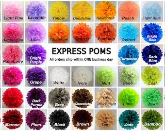 "Tissue Paper Pom Poms - 5 Large Poms - Large 17"" - Ships within ONE Business Day - Tissue Poms - Tissue Pom Poms - Choose Your Colors!"