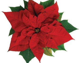 Poinsettia Pillow.  This decorative floor pillow was created drawing inspiration from the rich reds and greens of the Poinsettia.