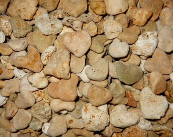 Bulk Lot 450 X-Small Heart Shaped Beach Stones. Home Decor,Garden, Wedding