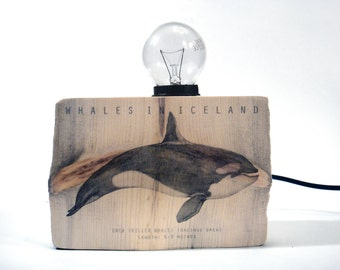 Driftwood table lamp with Killer whale illustration. Small. Wooden lamp.