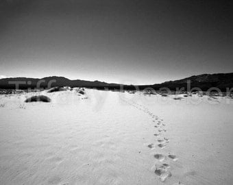Footprints - Mojave National Preserve - California desert - summer - sand - mountains -  black and white 8x10 matte print