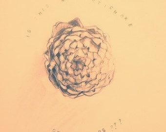 Food Drawings on Paper, Artichoke