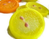 Citrus Wedding Favor Orange & Lemon Citrus Slices - Scentcosmetics