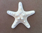 White Knobby Starfish nautical Beach Decor Set of 10