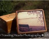 Upcycled Vintage style cigar box with Washington DC Cherry Blossom Art