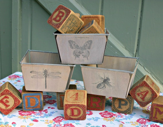 Metal-Rimmed Wood Berry Basket Boxes--Set of 3--Paint Washed with Vintage Butterfly, Dragonfly, Bee Images