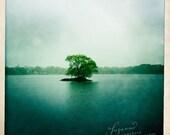 Jamaica Pond in the rain