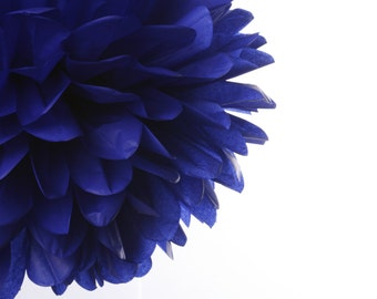 Royal Blue  1 Large Tissue Paper  Pom Poms