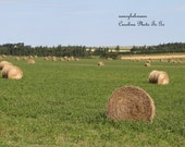 Art photography of an agricultural scene on Prince Edward Island, hay bales