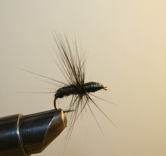 Fly Fishing Flies - Black Wool Ant with Black Hackle and Thread Head - Number 10 Hook - Made in Michigan - Fishing Fly - Terrestrial Lure