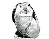 Bunny Rabbit Illustration - Art Print