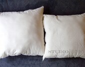 Pillow Insert/ Pillow Forms for Studio5790 pillow covers
