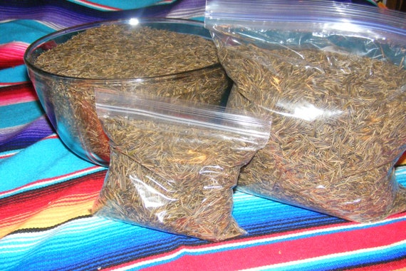 Native American Hand Harvested Wild Rice from White Earth Minnesota 10 Pound Bag New Crop 2015