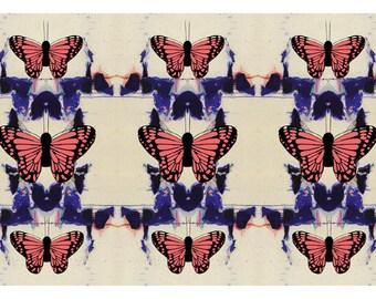Splatterflies - 5x7 Art Card - Butterfly Photography