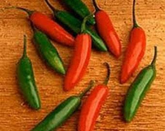Heirloom HOT Serrano Pepper, Organically Farm Grown, Non GMO, 10 Seeds