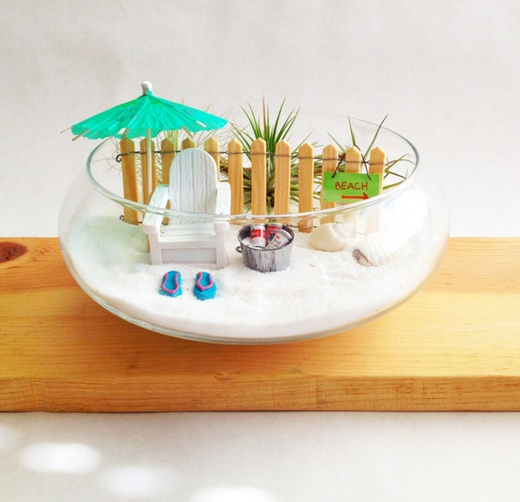 Beach Garden Terrarium. Air Plants. Beach Miniatures.