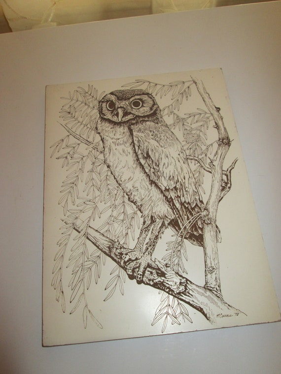 Clearance Sale - Vintage Scratch Art Owl from 1975 8 7/8 x 12 inch Foam Board