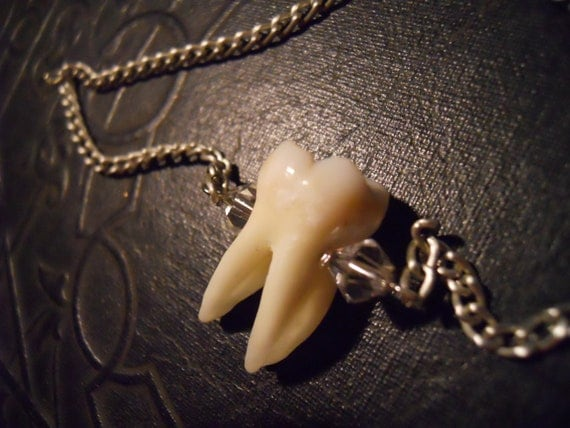 Human Tooth with Silver Cavity and Crystals Molar Necklace