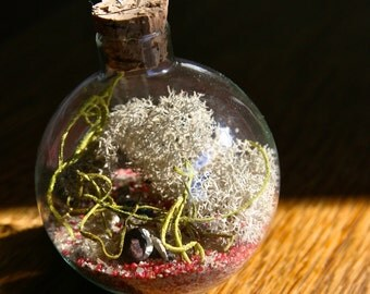 OOAK glass terrarium Christmas ornament seed bomb by Flower Power Nation