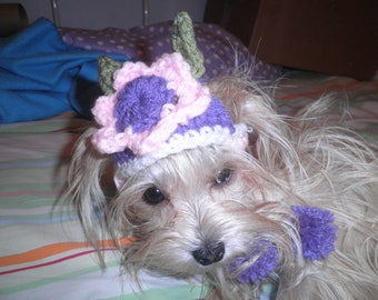 Crocheted Flower Dog Hat,  X Small and Small  Flower Cat Hat, Pink and Purple Flower Pet Hat