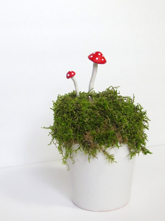 Items Similar To Bring The Fairies....Fairy Garden Red
