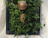 Storyteller's Box - Hanging Ivy Filled Vertical Planter Gold and Green with Key and Doorknob