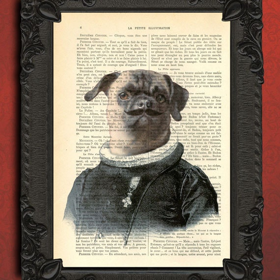 pug with moustache print pug in clothes print dressed pug mustache