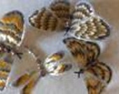 Tiger Butterflies Set of 4,hand painted