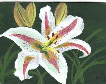 ACEO- Original Painting-Oriental Lily, Muscadet Lily- By the Artist