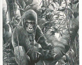 Waiting for a friend - Folding Greeting Card - Black & White Gorilla in the Jungle