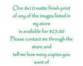 One 8x10 Print