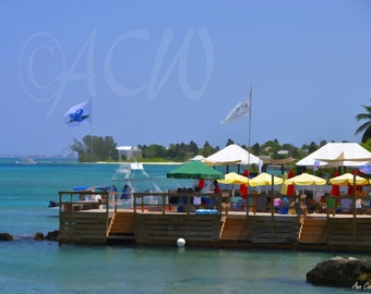 Bar in the Harbor of Georgetown, Caymen Islands (16 x20 canvas)