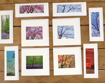 www.fjpicture.com 10 different blank greeting cards on satin paper, with envelop ready to post or frame