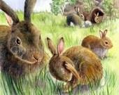 Kids Art Print - Animals Nursery Wall Art - Children Art - 7 x 7 - Bunnies in the Field